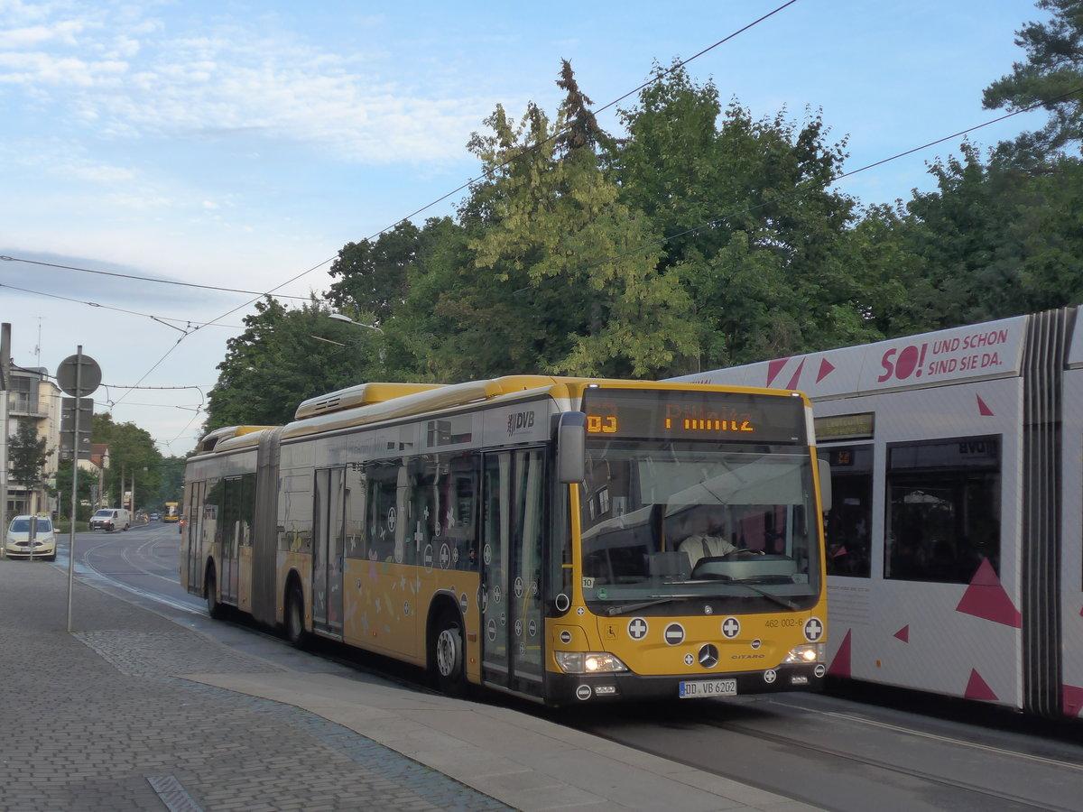 Dresden Dvb