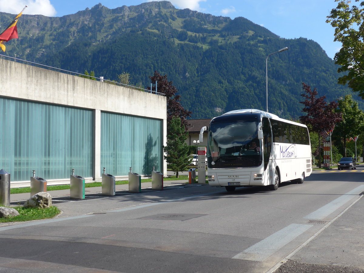(184'628) - Aus Ungarn: Molteam, Jászberény - MHK-356 - MAN am 3. September 2017 beim Bahnhof Interlaken Ost