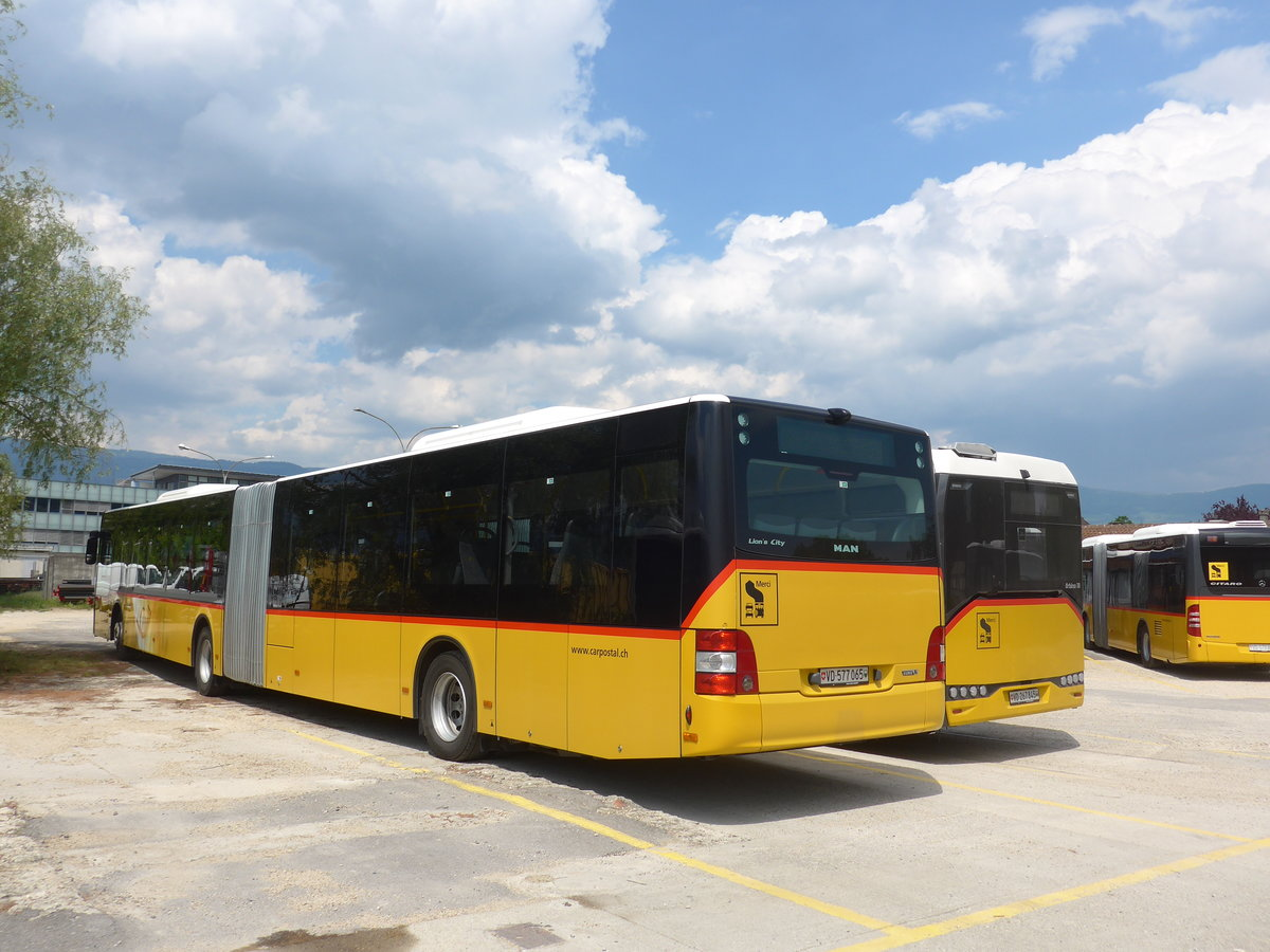 (205'415) - CarPostal Ouest - VD 577'065 - MAN am 25. Mai 2019 in Yverdon, Garage
