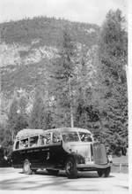 marti-kallnach/602050/md066---aus-dem-archiv-marti (MD066) - Aus dem Archiv: Marti, Kallnach - Nr. 2/BE 542 - Saurer/Lauber um 1940